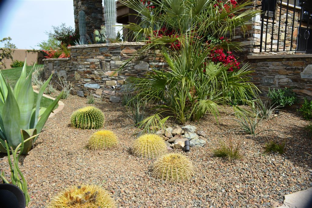 icture 096 - Phoenix Landscape Design - Landscape Architect Scottsdale The